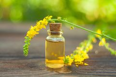 Essence of Agrimonia flowers on table in beautiful glass Bottle. Essence of flowers on table in beautiful glass Bottle Royalty Free Stock Image