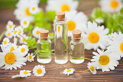 Essence of flowers on table in beautiful glass jar Royalty Free Stock Photography