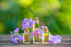 Essence of flowers on table in beautiful glass jar Stock Photo