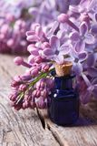 Essence of fragrant lilac flowers close up vertical Stock Photos