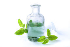 Essence with fresh mint leaves Royalty Free Stock Photography