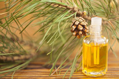 Free Essence Of Pine On Table In Beautiful Glass Jar Royalty Free Stock Image - 93027876
