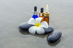 Essence oil, White frangipani and zen stone on water Stock Images