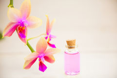 Essence of  orchid flowers on table in beautiful glass jar Stock Image