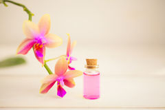 Essence of  orchid flowers on table in beautiful glass jar Stock Images