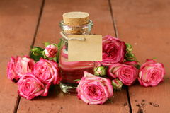 Essence of rose flowers Stock Images