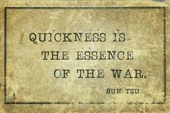Essence of war Sun Tzu royalty free stock image