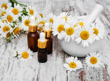 Essencial oil and camomile Royalty Free Stock Image