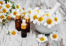Essencial oil and camomile Stock Images