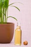 Essentiële oliën voor massage Stock Afbeeldingen