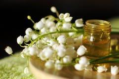 Essentiële olie voor aromatherapy Stock Afbeeldingen