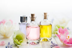 Free Essential Aroma Oil Royalty Free Stock Image - 91585066