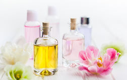 Essential aroma oil. Bottles with essential aroma oil and flowers on white wooden background. Healthy skin care. Place for text royalty free stock image