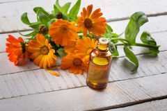Essential aroma oil Stock Image