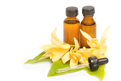 Essential aroma oil with champaka flower Stock Photo