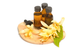 Essential aroma oil with champaka flower Stock Photography