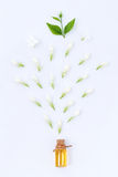 Essential aroma oil with jasmine on white background. Stock Image