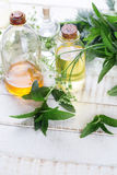 Essential aroma oil with mint in bottles  on white painted woode Stock Photos