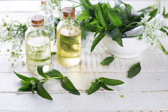 Essential aroma oil with mint  on white painted wooden backgroun Royalty Free Stock Photography