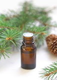 Essential aroma oil. With needles aroma Royalty Free Stock Photo