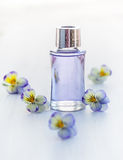 Essential aromatic oil Stock Photography