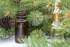 Essential coniferous oil in a dark bottle, a bottle of extract, pine branches royalty free stock photos