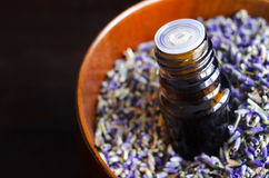 Essential lavender oil. Small bottle of essential lavender oil Stock Images