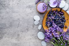 Essential lavender salt with flowers top view. Stock Photography