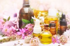 Essential medicinal oil bottles and pink flowers royalty free stock photography