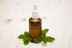 Essential mint oil Stock Image