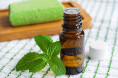 Essential mint oil Royalty Free Stock Image