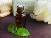 Essential mint oil Royalty Free Stock Photos