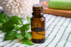 Essential mint oil Royalty Free Stock Images
