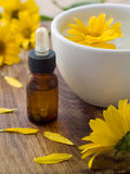 Essential Oil Royalty Free Stock Photo