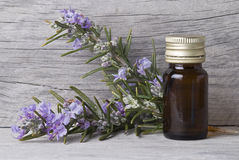 Essential oil. Royalty Free Stock Photos
