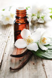 Essential Oil stock photography