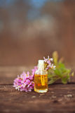 Essential oil of Arabis flower on a table in beautiful bottle Royalty Free Stock Image