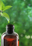Essential oil bottle Stock Photos