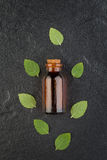 Essential oil bottle with fresh green mint on black stone backgr Stock Photography