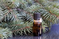 Essential oil in a bottle of pine needles royalty free stock photo