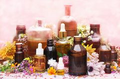 Essential oil bottles, medicinal flowers and herbs stock photography