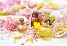 Essential oil bottles on medicinal flowers and herbs background stock photos