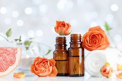 Essential oil bottles with towel, grapefruit and rose flowers on white table. Spa, aromatherapy, wellness, beauty background. Royalty Free Stock Photo