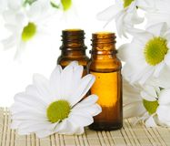 Essential Oil Bottles with White Daisy Royalty Free Stock Photography