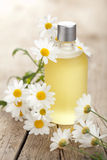 Essential oil and camomile flowers Royalty Free Stock Photo