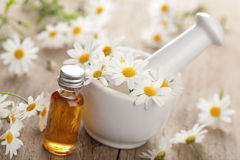 Essential oil and camomile flowers in mortar Royalty Free Stock Images
