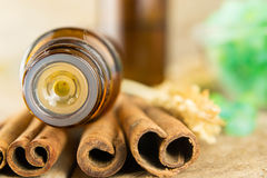 Essential oil with cinnamon Stock Images