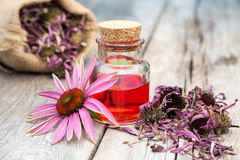 Essential oil and coneflowers on wooden rustic table, bag with h stock photography