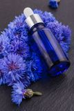Essential oil of cornflower on a dark stone background royalty free stock photo