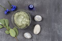 Essential oil with cosmetic clay and flower and branch of eucalyptus, stones, for spa treatments, in glass bowl on grey. Composition withessential oil, cosmetic royalty free stock photo